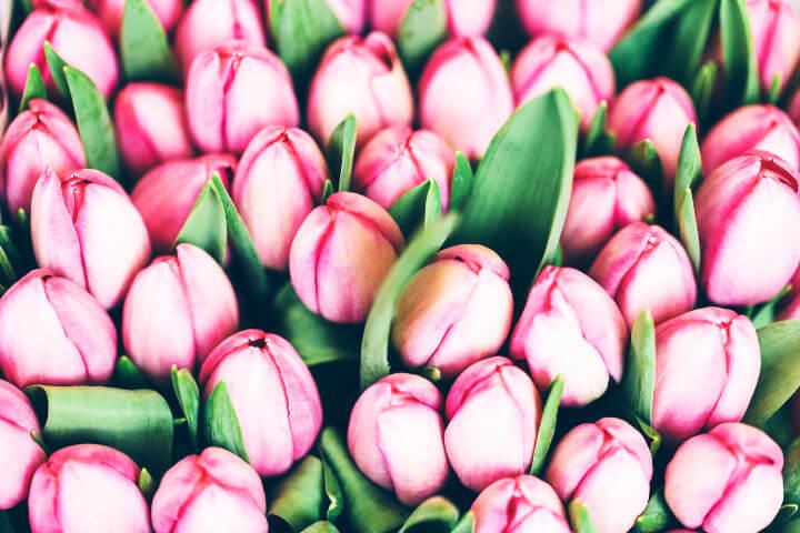 valentines day flower ideas