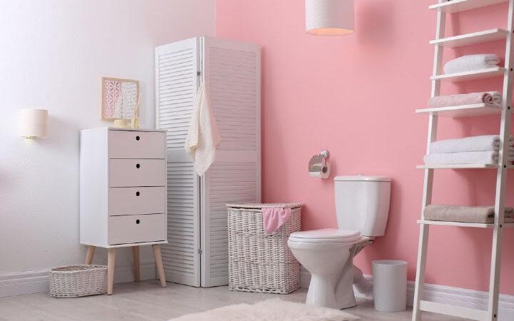 find best deal on toilet paper
